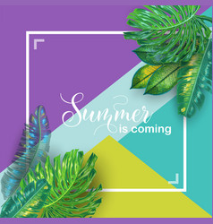 hello summer tropical design with palm leaves vector image