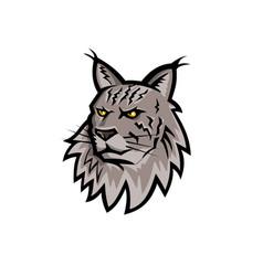 Maine coon cat head mascot vector
