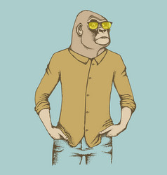 monkey gorilla vector image