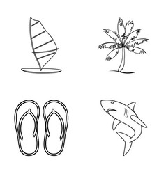 board with a sail a palm tree on the shore vector image vector image