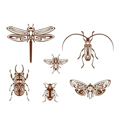 Insects in tribal ornamental style vector image vector image