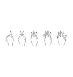 hand gesture counting one two three four five vector image