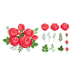 red roses bouquet wedding flowers decoration vector image