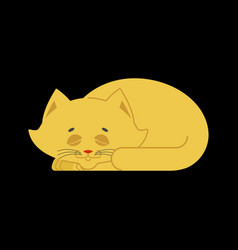 Sleeping cat yellow isolated kitten be asleep vector