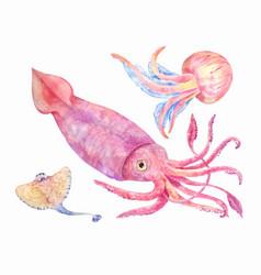 Squid batoidea jellyfish sea set vector