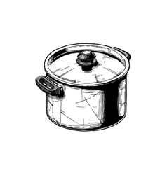 stock pot vector image