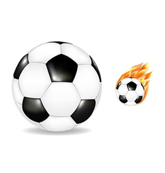 Two Soccerballs vector