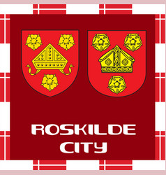 national ensigns of denmark - roskilde city vector image