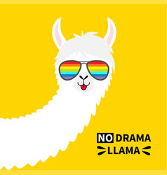 Alpaca llama animal face in rainbow glassess no vector