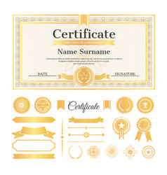 Certificate sample with stamps vector