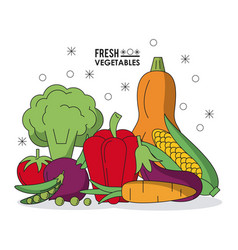 Colorful poster with fresh vegetables vector