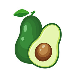 colorful whole and half avocado vegetable vector image