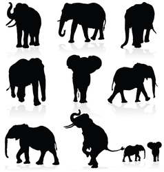 elephant black silhouette vector image