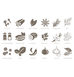 fragrant spices linear icons set spices vector image