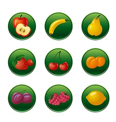 fruits and berries button set vector image