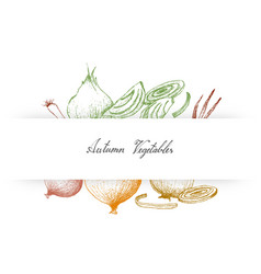 Hand drawn autumn vegetables of onions and scallio vector