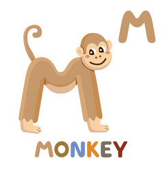 m is for monkey letter m monkey cute animal vector image