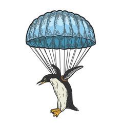 Penguin bird fly on parachute color sketch vector