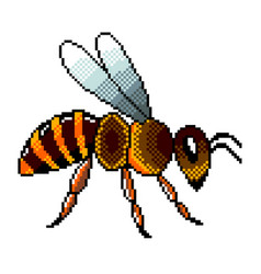 Pixel art flying bee detailed isolated vector