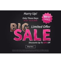 Poster Big Sale Limited Offer vector image