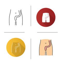 Rectum and anus icon vector