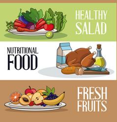 brochure food healthy nutrition fresh vector image vector image