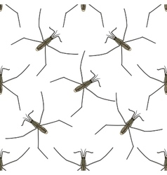 Seamless pattern with Common water strider vector image vector image