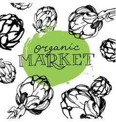 artichokes organic market vector image