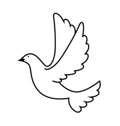 dove of peace flying vector image vector image
