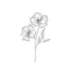 Hibiscus flower tropical plant doodle floral vector