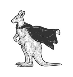 Kangaroo in superhero cloak sketch vector