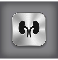Kidneys icon - metal app button vector