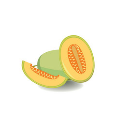 melon isolated in flat style Healthy food fruit vector image