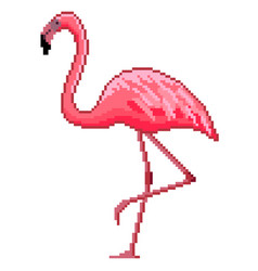 pixel art pink flamingo detailed isolated vector image