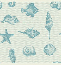 seamless pattern with seashells various shapes vector image