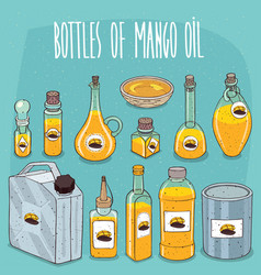 Set of containers with mango oil vector