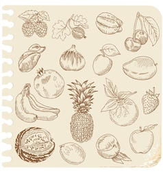 Set of Doodle Fruits vector image vector image