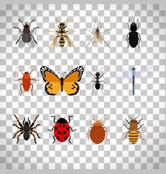 insects set on transparent background vector image
