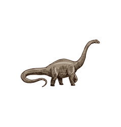 Blue dinosaur isolated childish brontosaurus dino vector