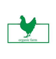 organic farm premium chicken logo labels badges vector image