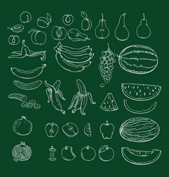 set chalk sketch fruits vector image