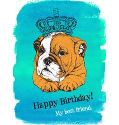 birthday card of puppy english bulldog in crown vector image