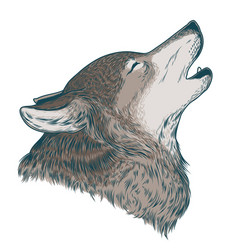a howling wolf vector image vector image