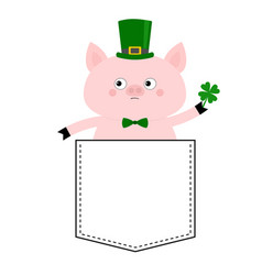Pig face head in pocket patrick day hat vector