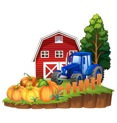 farm scene with blue tractor and pumpkins vector image vector image