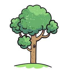 cartoon image of tree icon tree symbol vector image vector image