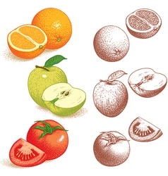 Orange Apple Tomato vector image vector image