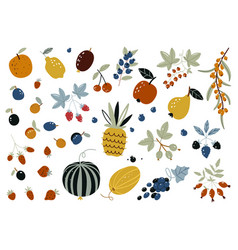 autumn harvest fruits berries and vegetables vector image