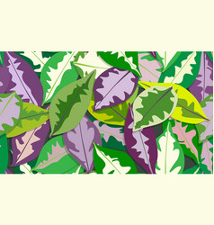 colorful caricature plant leaves pattern seamless vector image