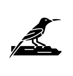 Crimson sunbird black glyph icon vector